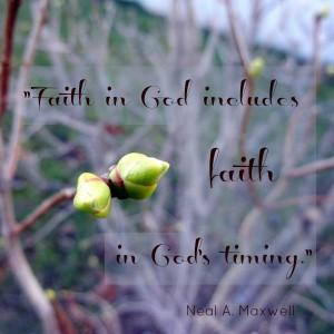 faith-God-timing-lm