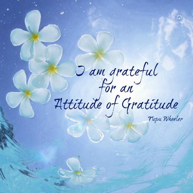 I am grateful for an attitude of gratitude